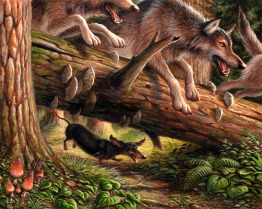 Wiener Wolf written and illustrated by Jeff Crosby for Disney Hyperion